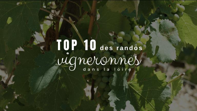 Top 10 des randos vigneronnes